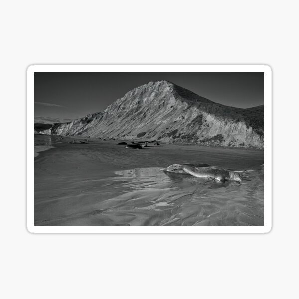 Drake's Beach - Point Reyes National Seashore Sticker