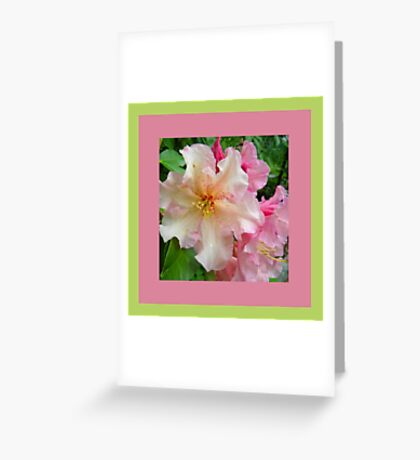 Ruffled Rhododendron Blossoms Greeting Card