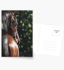 Bey El Bay Postcards
