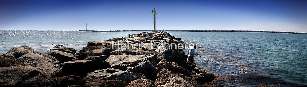 Fishing by Henrik Lehnerer