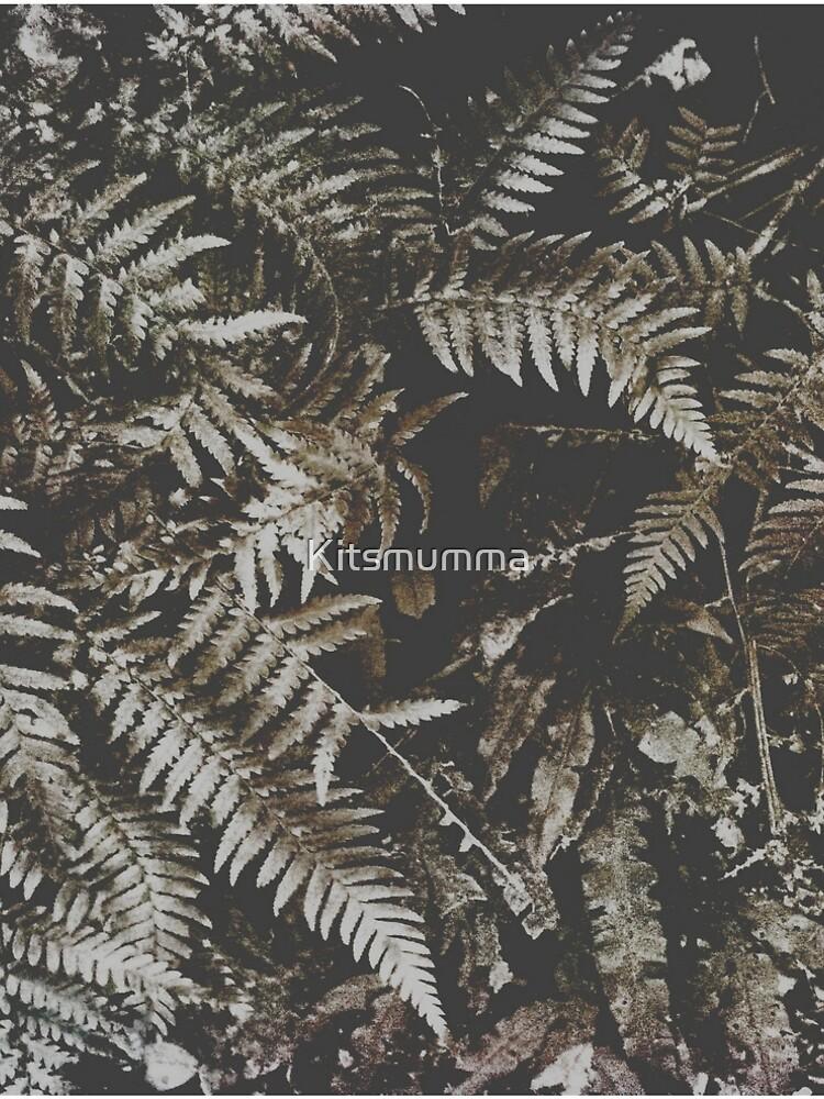Forest Fern by Kitsmumma
