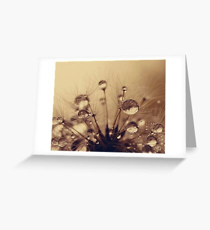 Toffee Drops Greeting Card
