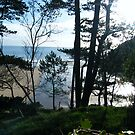 Langland Bay  by Joyce Knorz