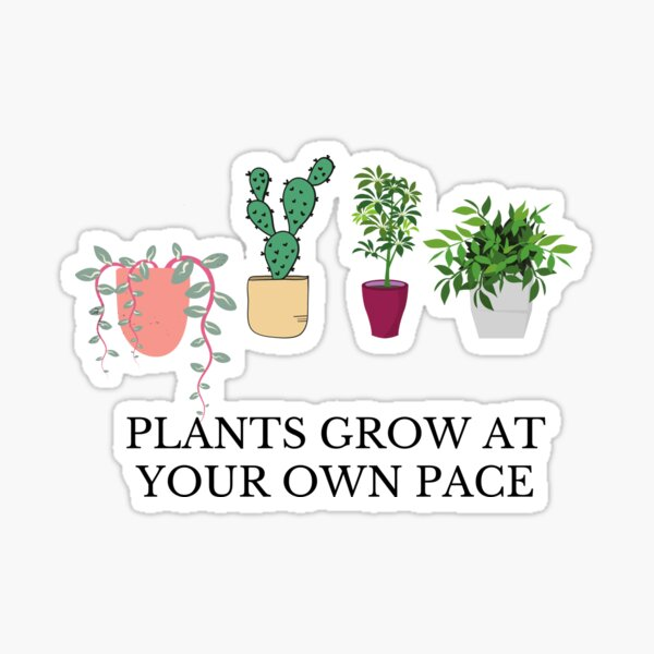 Plants Grow At Your Own Pace Sticker