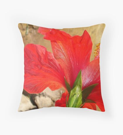 Back Of A Red Hibiscus Flower Against Stone Throw Pillow