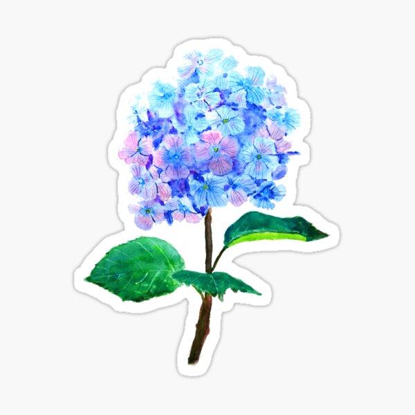 blue purple hydrangea flower  Sticker