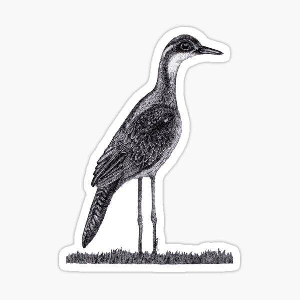 Bush Stone-Curlew Sticker