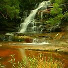Somersby Falls .. with grass by Michael Matthews