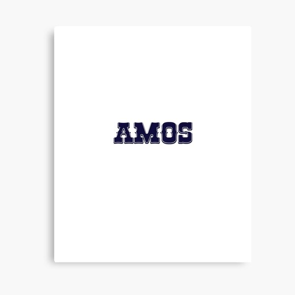 AMOS Canvas Print