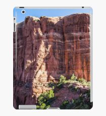 Cathedral Rock from the Saddle Area iPad Case/Skin