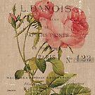 Vintage Burlap Floral 2 by Debbie DeWitt