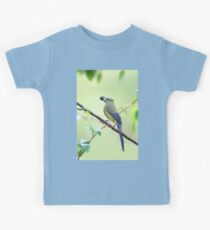 Long-tailed Silky-Flycatcher - Costa Rica Kids Clothes