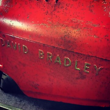 David Bradley  by banncrawford