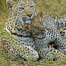 Motherly love!(This is so cuddly!) by Anthony Goldman
