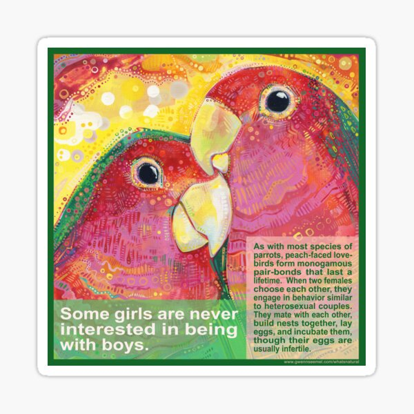 Polly Want a Polly (Peach-faced Lovebird) Sticker