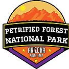 PETRIFIED FOREST NATIONAL PARK ARIZONA MOUNTAINS HIKING CAMPING HIKE CAMP 1962 2 by MyHandmadeSigns