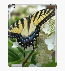 Yellow Tiger Swallowtail by Elisabeth and Barry King™ iPad Case/Skin