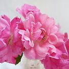 No Ordinary Roses by LouiseK