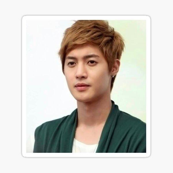 Kim Hyun Joong Pegatina