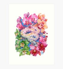"""Year of the Snake"" - Chinese Zodiac Watercolour  Art Print"