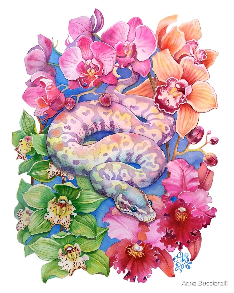 Quot Quot Year Of The Snake Quot Chinese Zodiac Watercolour Quot By