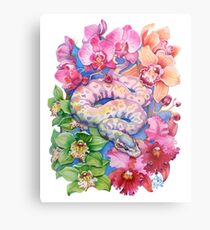 """Year of the Snake"" - Chinese Zodiac Watercolour  Metal Print"