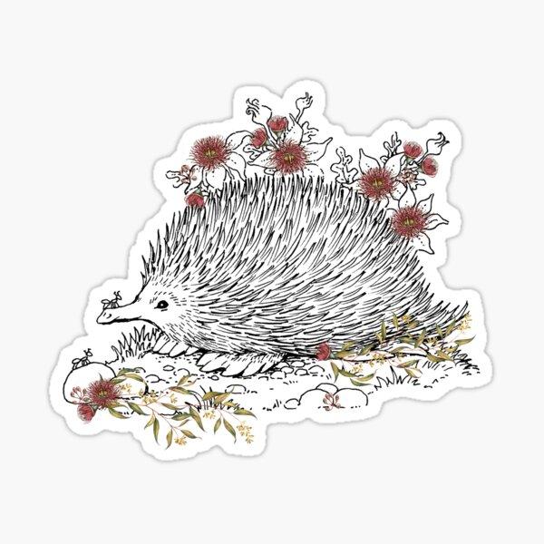 AUSTRALIAN NATIVE ANIMALS.  ECHIDNA WITH HAND ILLUSTRATED AUSTRALIAN BUSHLAND WILDFLOWERS Sticker