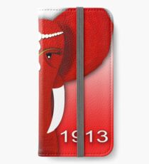 Delta Sigma Theta iPhone Wallet/Case/Skin