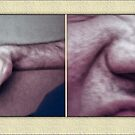 Why Is Your Nose Not Your Arm? by Ted Byrne