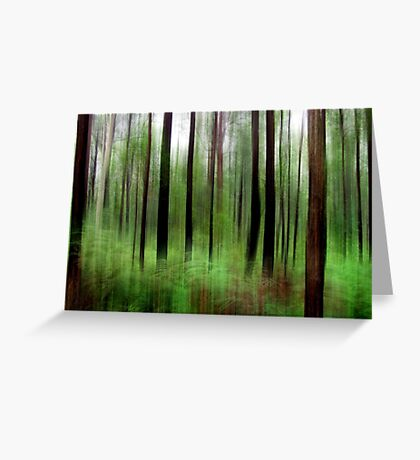 Eucalypts and Bracken Greeting Card