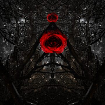 Dark Rose Path by Kaitbrooks35
