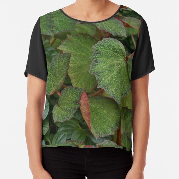 Lush Large Leaf Begonia  Chiffon Top