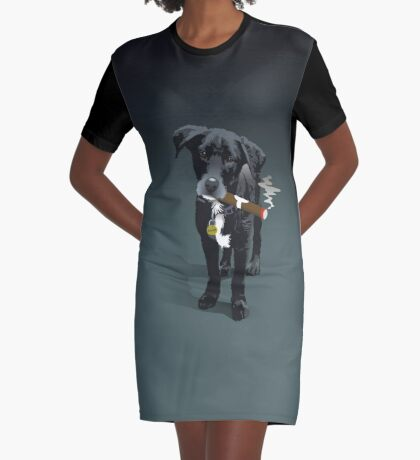 Dorrigo Graphic T-Shirt Dress