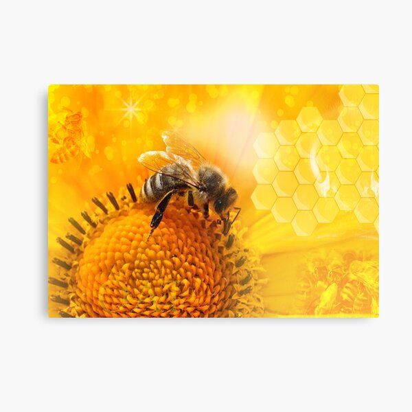 Golden Bee Frequency  Canvas Print