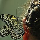 a butterfly in her hair by ANNABEL   S. ALENTON