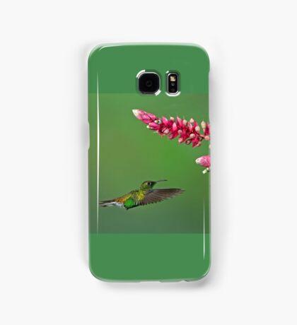 Coppery-headed emerald hummingbird - Costa Rica Samsung Galaxy Case/Skin