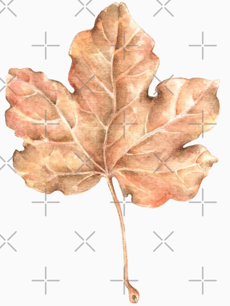 Maple leaf by pambrosini