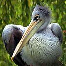 Beaky by John Dalkin