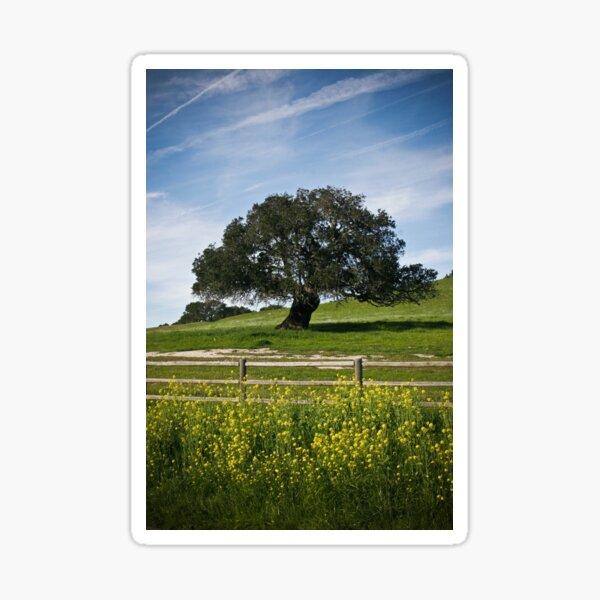 Mustard Tree Sticker