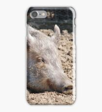 Pig in mud with pig out slogan iPhone Case/Skin