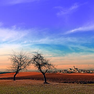 Trees, sunset, clouds, panorama and village   landscape photography by patrickjobst