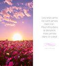 « Les vrais amis - Citation sur l'amitié » par beauxproverbes