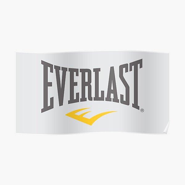demet-Everlast-boxing-nduwur Poster