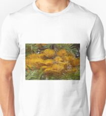 Silky Oak (Grevillea robusta) Unisex T-Shirt