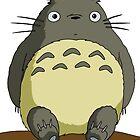 Totoro by Jakob-B