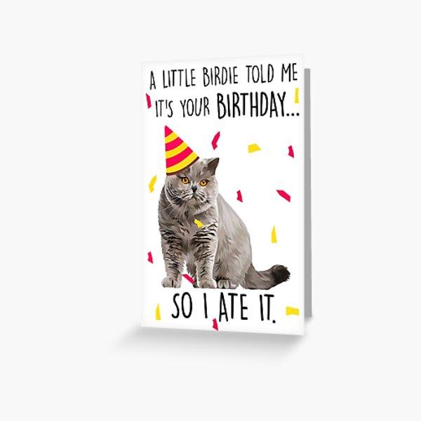 Katze geburtstagssprüche Bilder Geburtstag