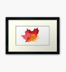 Autumn Maple Leaf Spray Framed Print