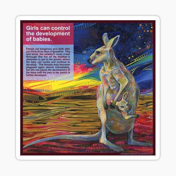 Choice (Red Kangaroo) Sticker
