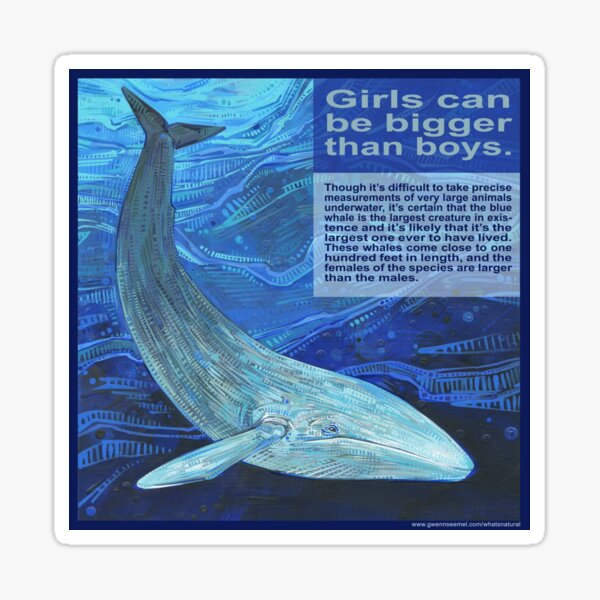 Big Mama (Blue Whale) Sticker