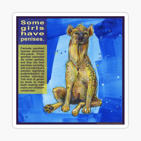 She Wears the Pants (Spotted Hyena) Sticker